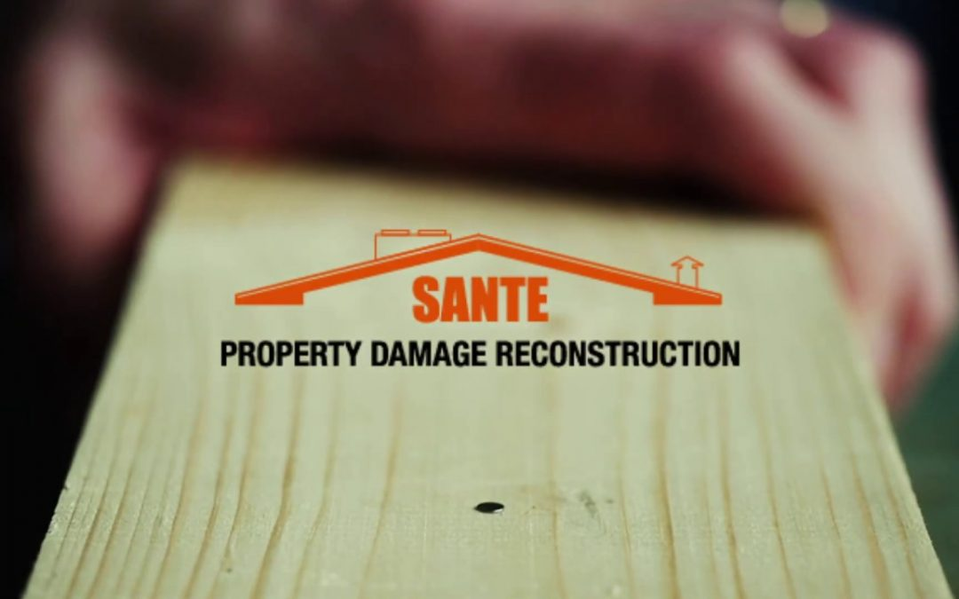 SANTE Damage Reconstruction Commercial